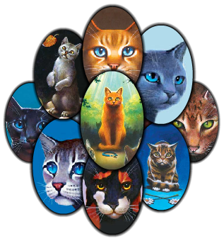 Warrior Cats World